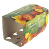 carton packaging vietnam